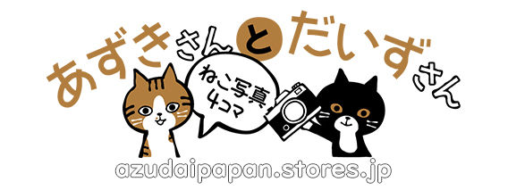 azudaipapan's store